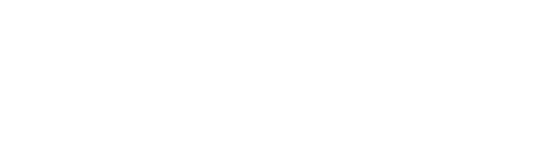 FLS Transport Logo